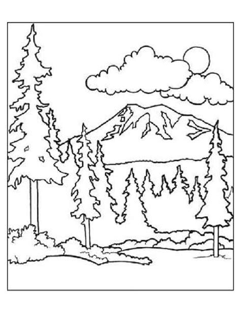 preschool forest coloring pages