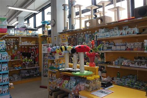 arredamento per cani negozio per cani arredamento negozio per animali busto