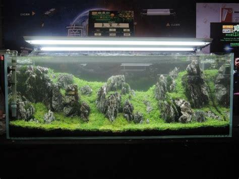 Termometer Aquascape nanfeng 5th china aquascape contest aquajaya