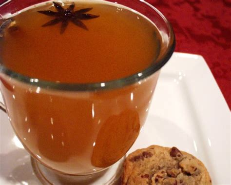 spiced holiday tea recipe food com