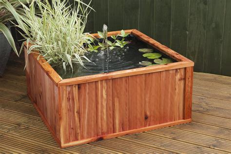 vasche per tartarughe come allestire vasca per tartarughe d acqua dolce in giardino