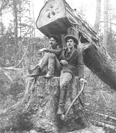 Pictures Of Lumberjacks In Canada lumberjack legacies 1 letting light into the sw