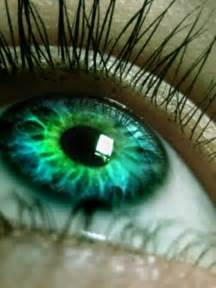 green eye color with green images green hd wallpaper and