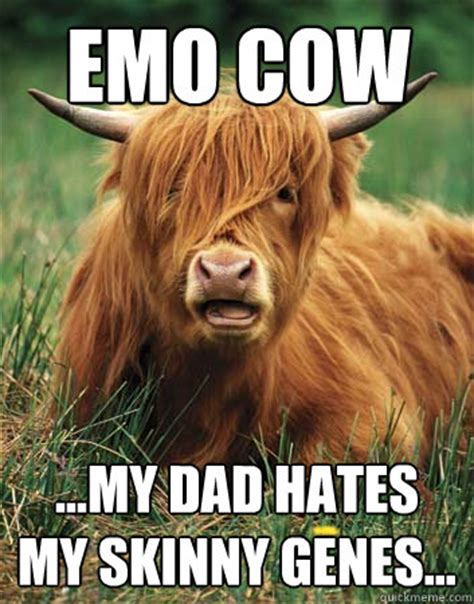 Genes And Memes - emo cow memes quickmeme