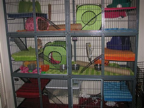 prairie dog house prairie dog cage by minionofsloth on deviantart