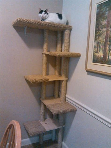 Handmade Cat Tree - handmade cat trees 28 images cat tree flickr photo