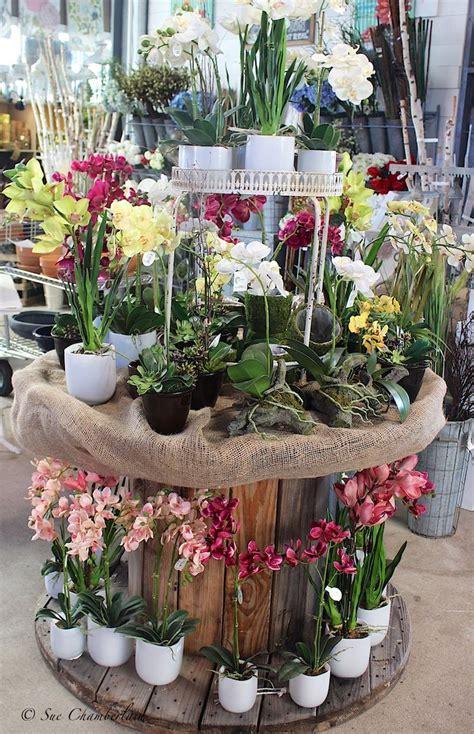 images  garden center merchandising display