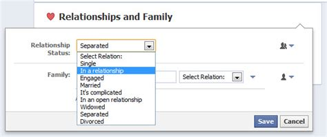 fb relationship status cool facebook status ideas that will get likes