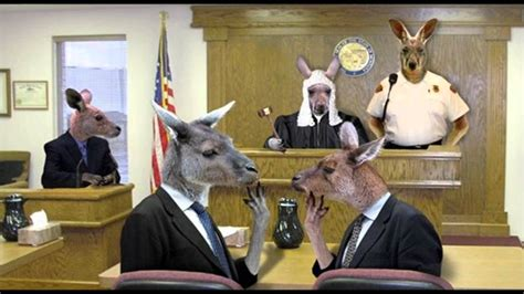 a bench trial sovereign freeman in court bench trial full audio