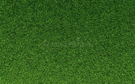 gras pattern ai grass texture stock image image of lawn golf soccer