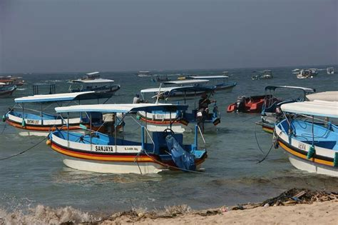 glass bottom boat for hire to turtle island tanjung - Boat Hire Nusa Dua