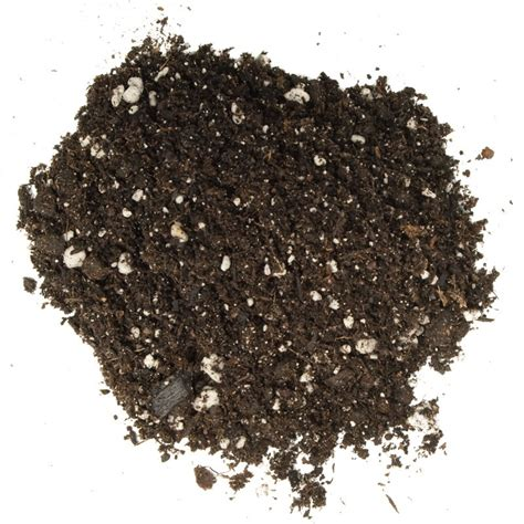 foxfarm ocean forest potting soil 1 5 cu ft