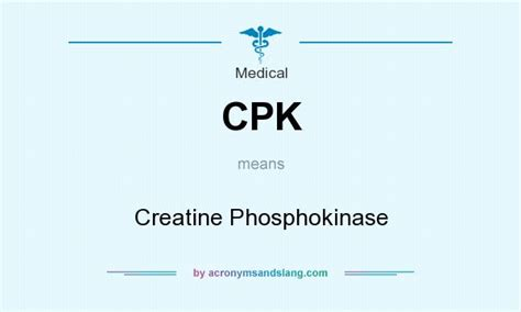 creatine meaning cpk creatine phosphokinase in by