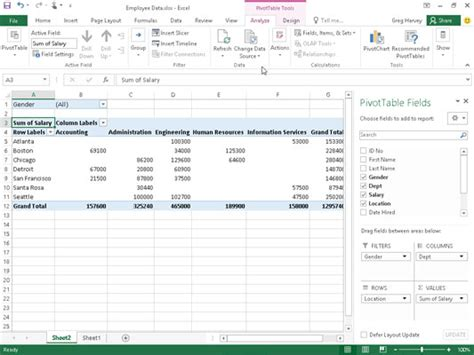 excel pivot tables for dummies how to filter pivot table data in excel 2016 dummies