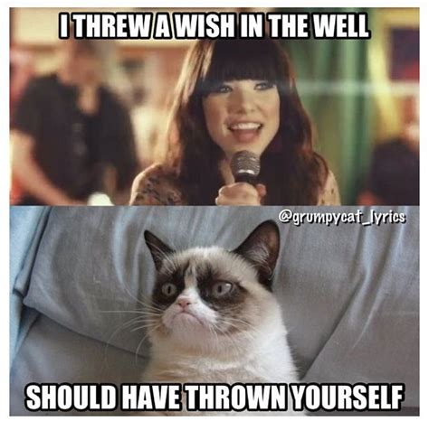 Singing Cat Meme - grumpy cat sings with carly rae jepsen grumpycat meme