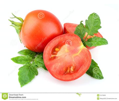 Sweet Tomato Gift Card - sweet tomatoes with leafs royalty free stock photo image 21279005