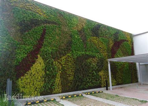 imagenes muros verdes im 225 genes de verde 360 jardineros mx