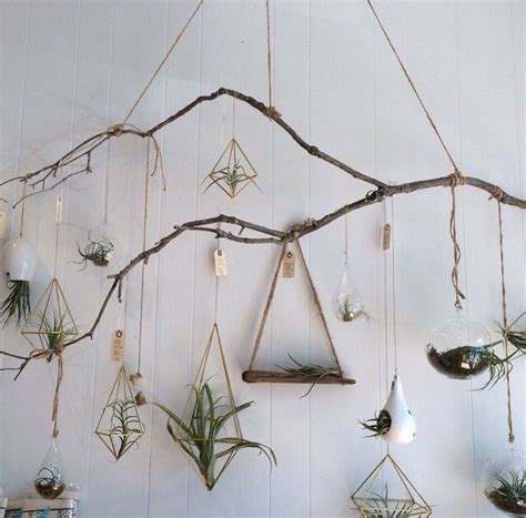 25 best ideas about tree branch decor on