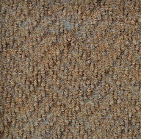 Dreamweaver by Shaw   Indoor   Outdoor   Carpet   Durable