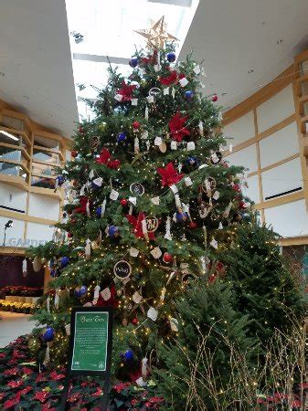 Cleveland Botanical Gardens Hours by Cleveland Botanical Garden Oh Top Tips Before You Go