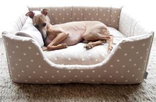 winners of the deeply dishy dog bed launch competition