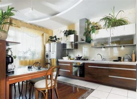 plants above kitchen cabinets tend 234 ncias decora 231 227 o de cozinhas 2017 mundodastribos