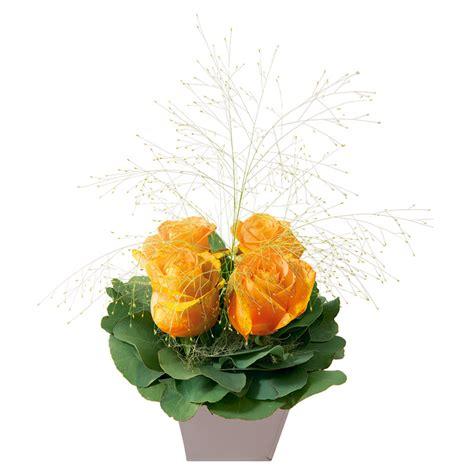 orange wohnzimmerwände composition de 4 roses gros boutons orange interflora