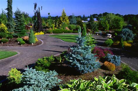 Oregon Garden by Questions About Conifers Oregon Garden Workshop Saturday