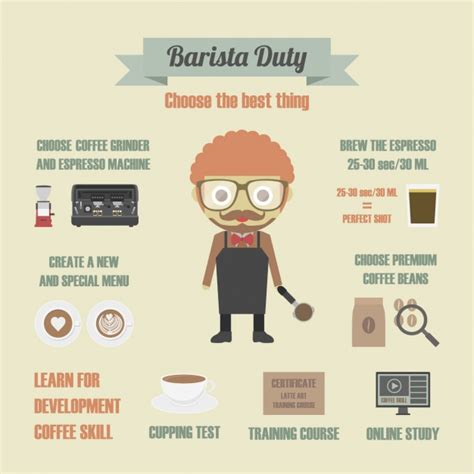 barista duties infography vector free