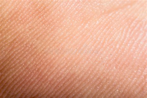 macro of clean healthy texture human skin stock photo 497410486 up human skin macro epidermis stock image image of cells health 36429395