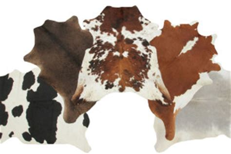 Cow Leather The Difference Between Lambskin And Cowhide Leather