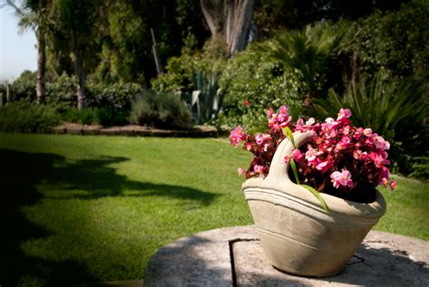 giardino dei semplici b b il giardino dei semplici