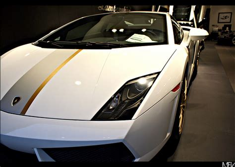 lamborghini gold and white white gold lamborghini front flickr photo