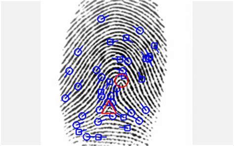 jsp pattern matching multimedia gallery fingerprint analysis nsf national