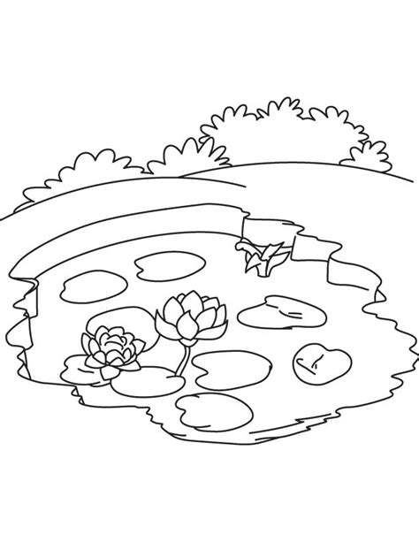 Free Coloring Pages Of A Frog In A Pond Coloring Home Pond Coloring Page