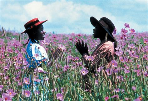the color purple book facts the color purple celebrates 30 years biography