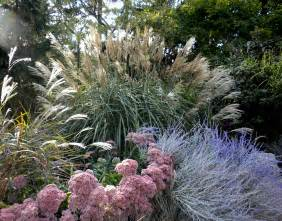 ornamental grasses how to prune practical gardening series