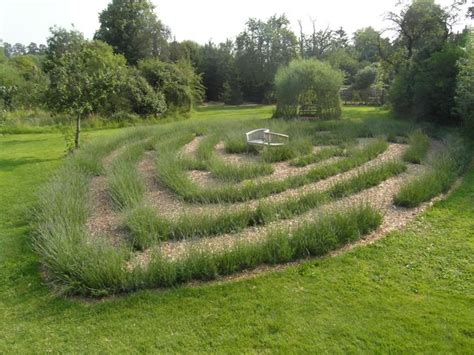 lavender maze heart shaped lavender maze in the gardens at anne hathaway