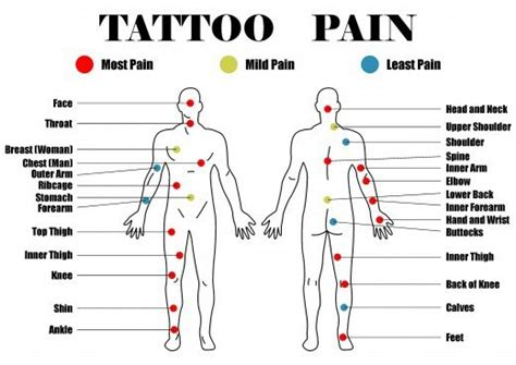 most painful spot to get a tattoo placement chart when you 39 re planning out