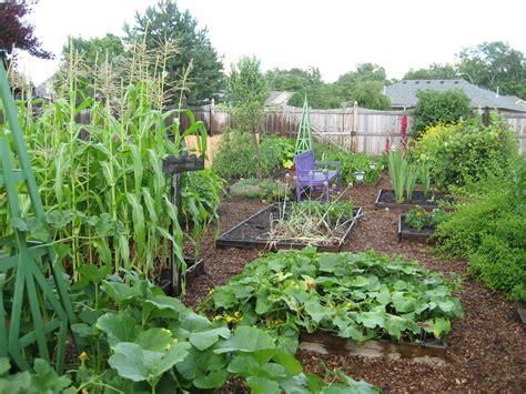 Pinning up a vegetable garden