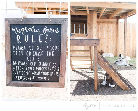magnolia farms waco tx lydia photographytexas 2016 magnolia market at the silos