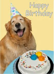 happy birthday dog images happy birthday to me
