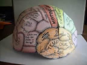 brain hat template brainhat jpg