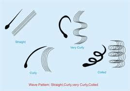 how to increase elasticity in hair hair elasticity natural hair and beauty tips