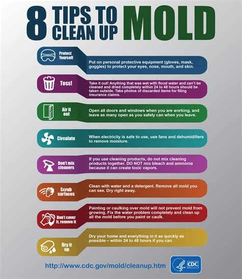 Infographic 8 Tips To Cleanup Mold Cdc