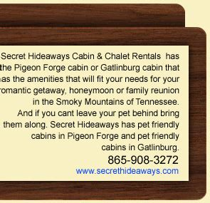 family friendly  pigeon forge    pet friendly