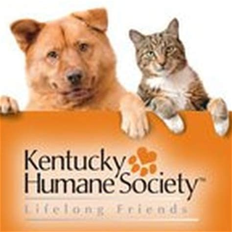 ky humane society dogs kentucky humane society animal shelters 241 steedly dr southland park louisville