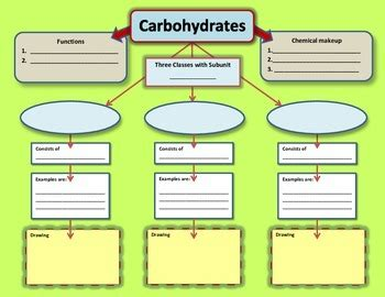 carbohydrates for grade 8 graphic organizer for carbohydrates by learning leap tpt