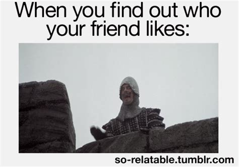 monty python quotes holy grail so relatable gifs relatable gifs quotes haha