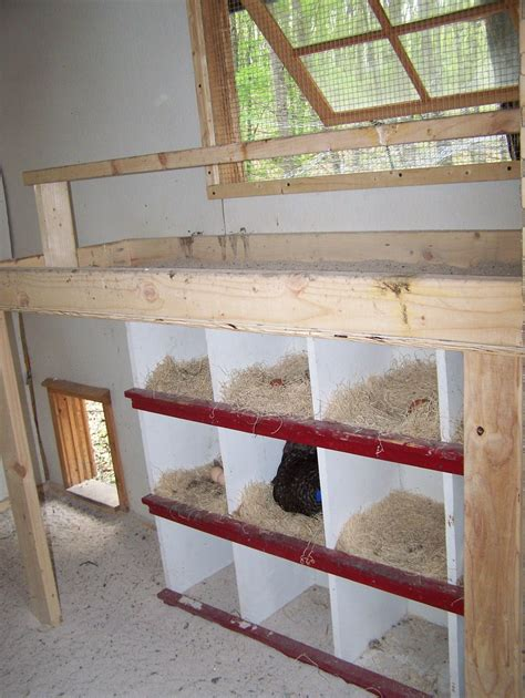 Backyard Chickens Nesting Boxes Nesting Boxes